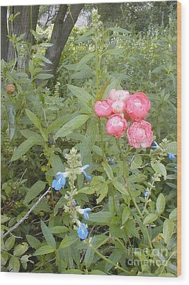 Wood Print featuring the photograph Antique Rose by Vonda Lawson-Rosa
