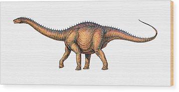 Apatosaurus Dinosaur Wood Print by Joe Tucciarone