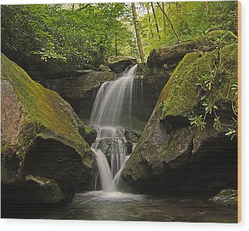Appalachian Mountain Creek Wood Print by Ulrich Burkhalter