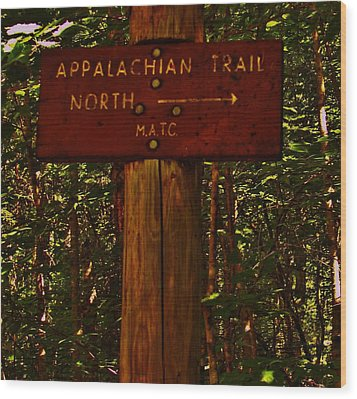Appalachian Trail Wood Print by Sarah Buechler