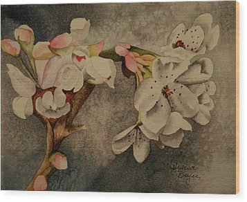 Wood Print featuring the painting Apple Blossom by Teresa Beyer