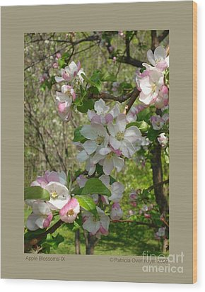 Apple Blossoms-ix Wood Print by Patricia Overmoyer