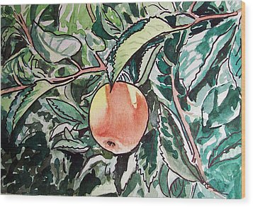 Apple Tree Sketchbook Project Down My Street Wood Print by Irina Sztukowski