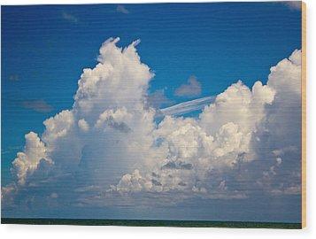 Approaching Storm Iv Wood Print