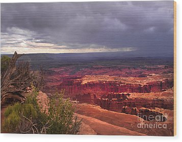 Approaching Storm  Wood Print by Robert Bales