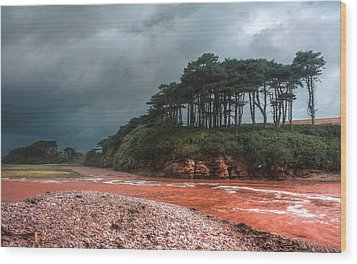 Approaching Storm Wood Print by Shirley Mitchell