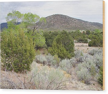 April New Mexico Desert Wood Print