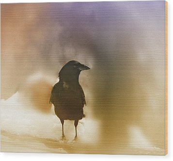 April Raven Wood Print by Susan Capuano