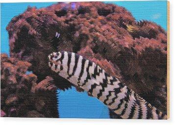 Aquarium Art 14 Wood Print by Steve Ohlsen