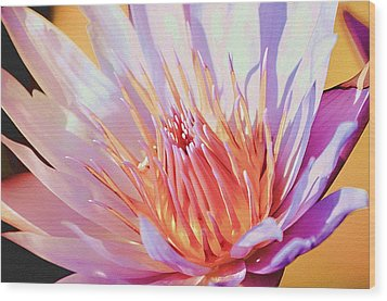 Aquatic Bloom Wood Print by Julie Palencia