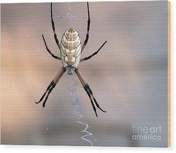 Arachnid Wood Print by Tammy Herrin