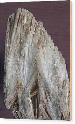 Aragonite Crystals Wood Print by Dirk Wiersma
