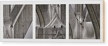 Architectural Detail Triptych Wood Print by Carol Leigh