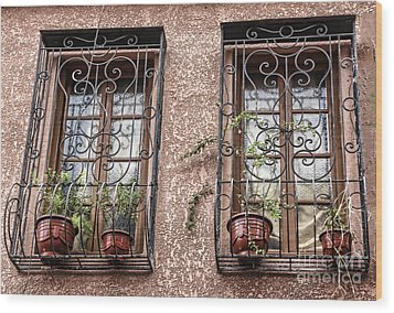 Architecture I Windows Wood Print by Chuck Kuhn