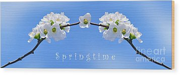 Archway To Springtime Wood Print by Kaye Menner