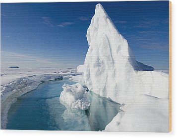 Arctic Sea Ice Melting, Canada Wood Print by Louise Murray