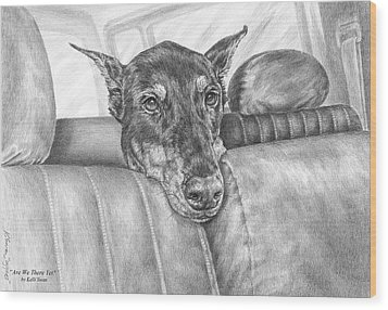 Are We There Yet - Doberman Pinscher Dog Print Wood Print by Kelli Swan
