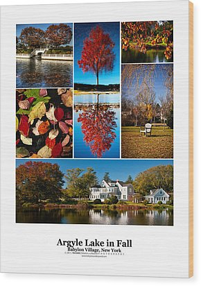 Argyle Lake Fall Poster Wood Print by Vicki Jauron