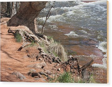 Wood Print featuring the photograph Arizona Red Water by Debbie Hart