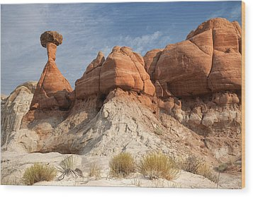Wood Print featuring the photograph Arizona Toadstool Hoodoos by Mike Irwin