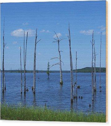Arkansas Lake Wood Print by Todd Sherlock