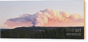 Arnica Fire Wood Print by Bob and Nancy Kendrick