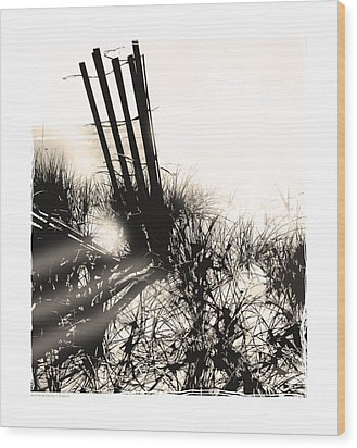 Art In The Sand Series 1 Wood Print by Bob Salo