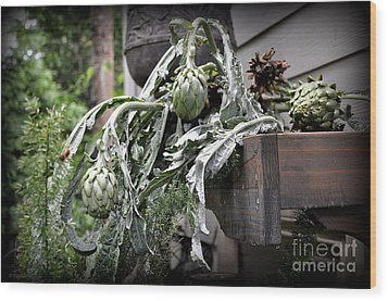 Wood Print featuring the photograph Artichoke by Tanya  Searcy