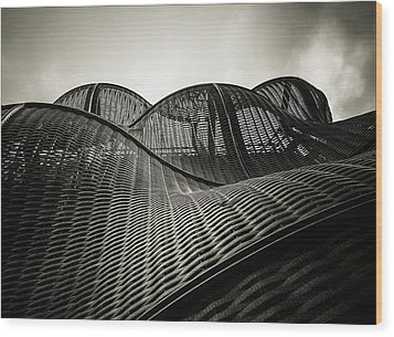 Artistic Curves Wood Print by Lenny Carter
