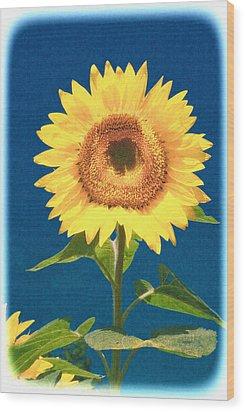 Wood Print featuring the photograph Artsy Sunflower by Nancy De Flon