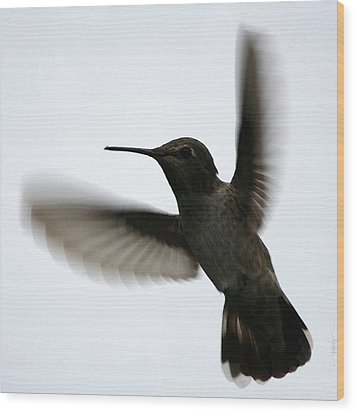 Wood Print featuring the digital art As She Flies by Holly Ethan