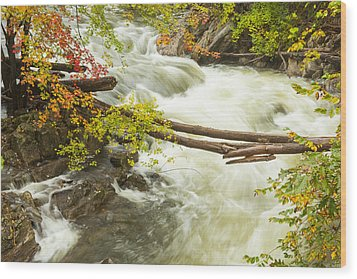 As The River Flows Wood Print by Karol Livote