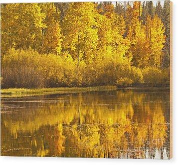 Aspen Pond Wood Print