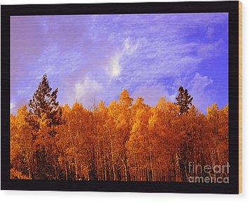 Aspen Ridge In Western Light Wood Print by Susanne Still