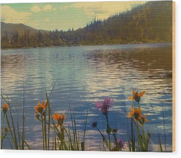 Wood Print featuring the photograph Aspen's Gift by Shawn Hughes
