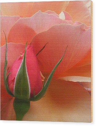 Aspiration Wood Print