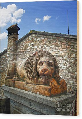 Assisi Italy - Lion Statue Wood Print by Gregory Dyer