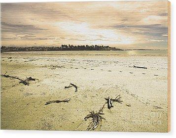 Wood Print featuring the photograph At Caroline Bay Timaru New Zealand by Nareeta Martin