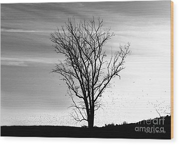Wood Print featuring the digital art At End Of Day I  by Rhonda Strickland