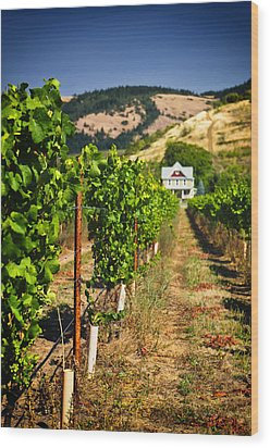 At Home On The Vineyard Wood Print by Vicki Jauron