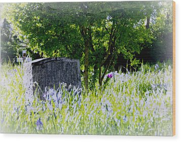 At Rest Wood Print by Marilyn Wilson