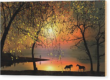At The Sunset Wood Print by Igor Zenin