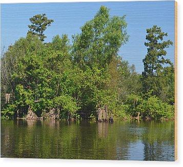 Atchafalaya Basin 46 Wood Print by Maggy Marsh