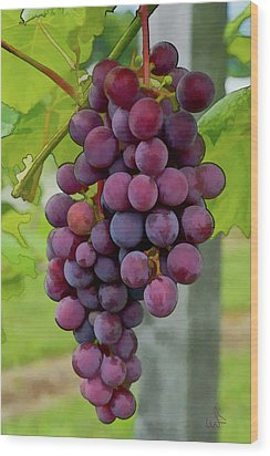 August Grapes Wood Print by Michael Flood