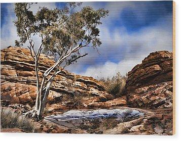 Australia Landscape 5 Wood Print by Wendy White