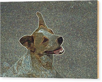 Australian Cattle Dog Mix Wood Print by One Rude Dawg Orcutt