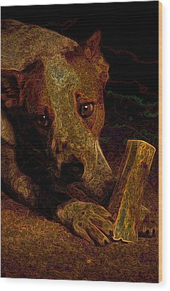Australian Cattle Dog Wood Print by One Rude Dawg Orcutt