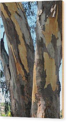 Wood Print featuring the photograph Australian Tree by Roberto Gagliardi