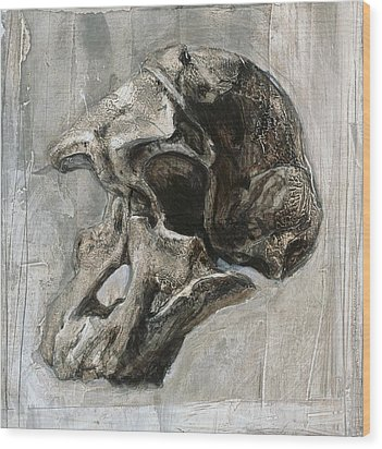 Australopithecus Africanus Skull Wood Print by Kennis And Kennismsf