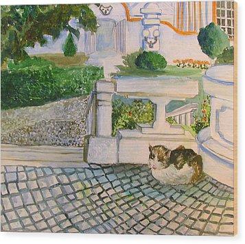 Austrian Cat Wood Print by Mindy Newman